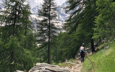Parc du Grand Paradis | Voyage et randonnée au cœur du parc Italien